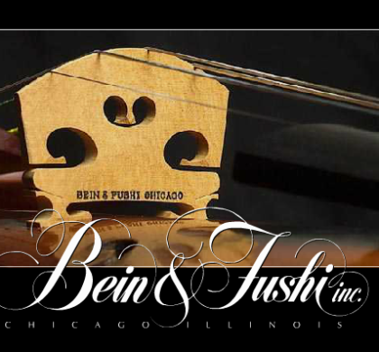 Bein and Fushi